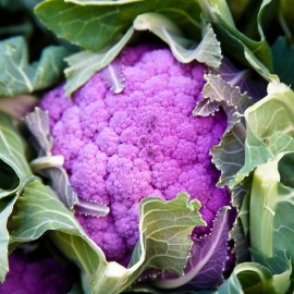 Cauliflower 'Violetto di Sicilia' Seeds