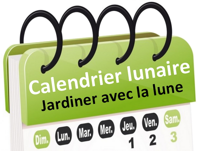 jardiner avec la lune calendrier lunaire de novembre. Black Bedroom Furniture Sets. Home Design Ideas