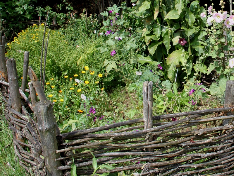 Permaculture blog jardin alsagarden le magazine des for Culture des jardins