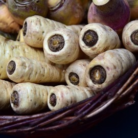 Parsnip Demi Long 'De Guernesey' (Old Variety) Seeds