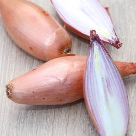 Onion Shallot 'Chicken Leg' (Old French Variety) Seeds