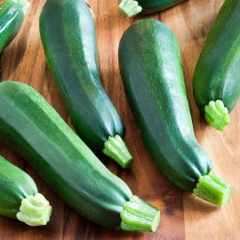 Courgette Verte de Milan 'Black Beauty' Graines