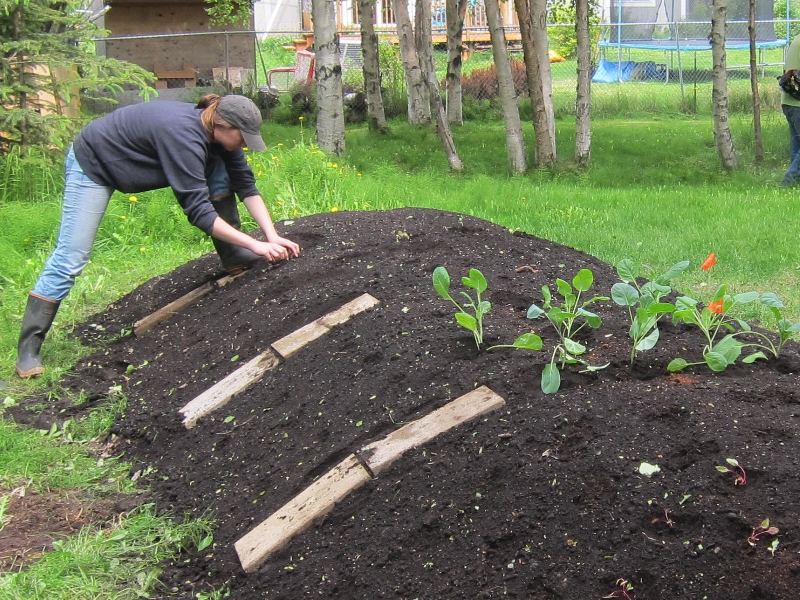 Permaculture les buttes de culture une v ritable for Jardin veritable